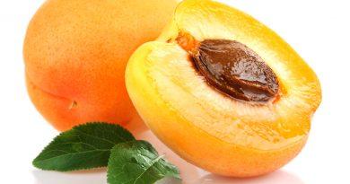 kaysia, plodove