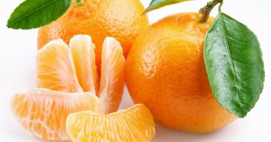 mandarina, plodove